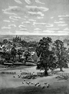 ANTIQUE PRINT: VIEW FROM HARROW CHURCHYARD.
