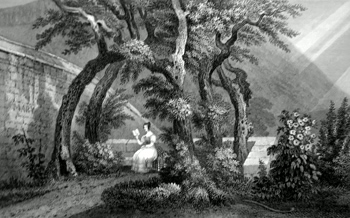 ANTIQUE PRINT: AN ARBOUR IN REGENT MURRAY'S GARDEN, OR