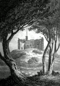 ANTIQUE PRINT: KEEP OF DUDLEY CASTLE.