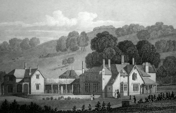 ANTIQUE PRINT: ENDSLEIGH COTTAGE, DEVONSHIRE.