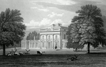 ANTIQUE PRINT: NEW PARK. WILTSHIRE.