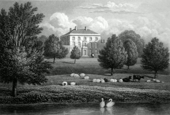 ANTIQUE PRINT: MAPLE HAYES, STAFFORDSHIRE.