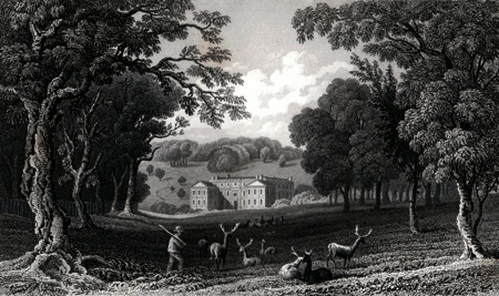 ANTIQUE PRINT: APPULDURCOMBE PK. LORD YARBOROUGH'S.