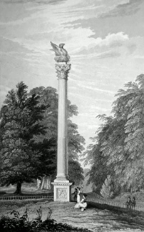 ANTIQUE PRINT: THE PHOENIX PILLAR, PHOENIX PARK, ERECTED 1745, BY PHILIP DORMER STANHOPE, EARL OF CHESTERFIELD [DUBLIN].