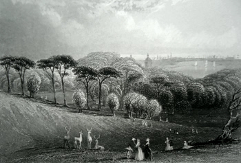 ANTIQUE PRINT: GREENWICH PARK.
