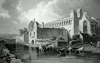 ANTIQUE PRINT: BISHOP'S PALACE, ST. DAVID'S, PEMBROKESHIRE.
