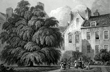 ANTIQUE PRINT: THE LEVEE ROOM IN REGENT MURRAY'S HOUSE, AS SEEN FROM THE GARDEN. WITH THE REMARKABLE THORN PLANTED BY QUEEN MARY.