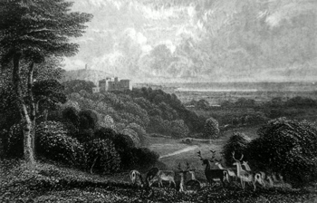 ANTIQUE PRINT: DUNSTER CASTLE, SOMERSETSHIRE.