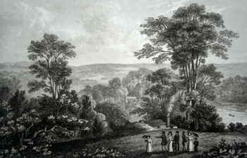 ANTIQUE PRINT: RICHMOND HILL, SURRY.
