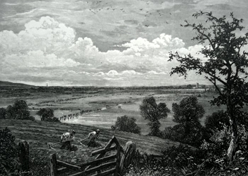 ANTIQUE PRINT: SEDGEMOOR, FROM MIDDLEZOY.