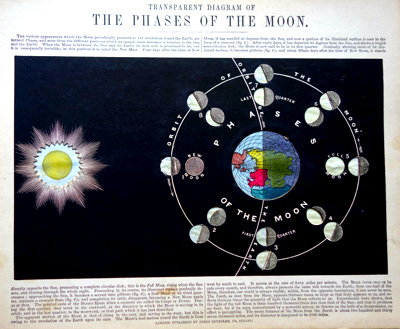 REYNOLDS, James, 1817-1876 – publisher : TRANSPARENT DIAGRAM OF THE PHASES OF THE MOON.